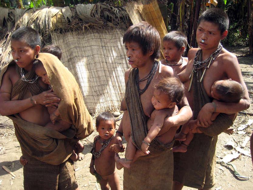 5 temas claves sobre la nueva regulación para los pueblos indígenas en aislamiento y contacto inicial