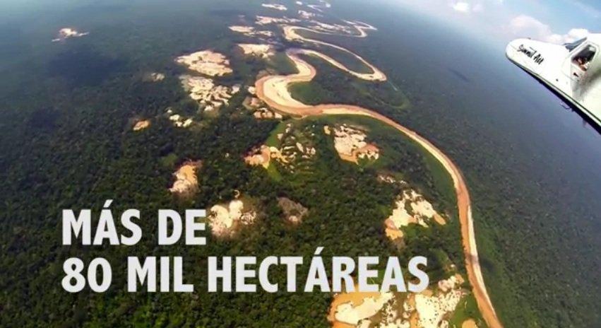 PCM: más de 80 mil hectáreas de bosques amazónicos han sido devastadas por la minería ilegal
