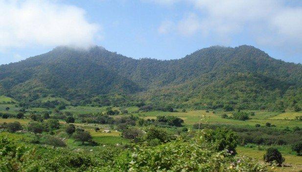 (Informe legal) SPDA recomienda archivar proyecto de ley sobre recorte del Parque Nacional Cerros de Amotape