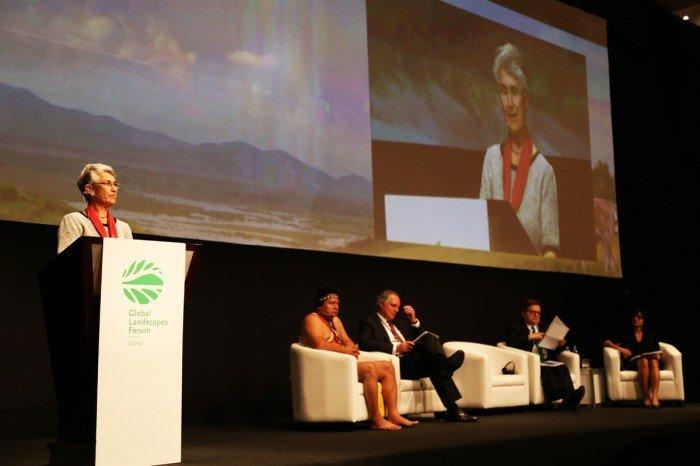 global_landscapes_forum_cop20_spda_actualidad_ambiental04