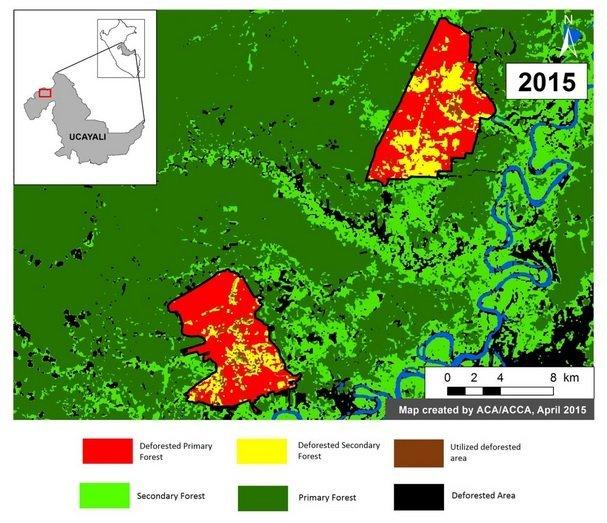 Mapa de la deforestación en Ucayali - ACCA