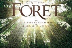 documental sobre bosques