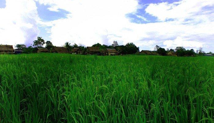 Zonas de agrobiodiversidad_Loreto_SPDA