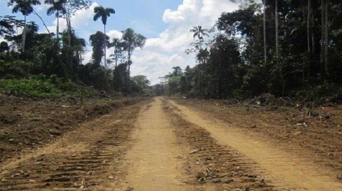 carretera_actualidad_ambiental_fenamad_nueva_eden_puerto_shipetiari_madre_dios_8