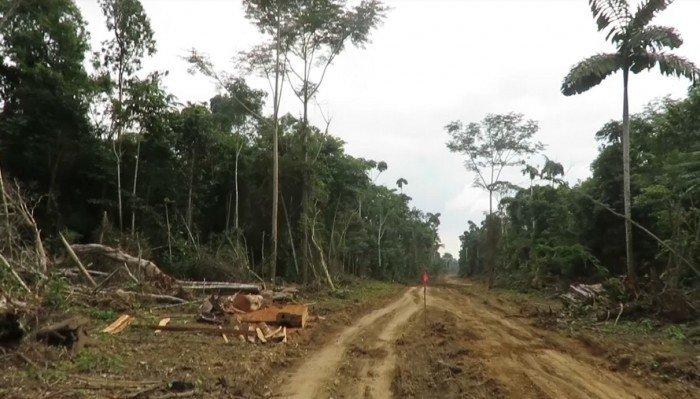 carretera_actualidad_ambiental_fenamad_nueva_eden_puerto_shipetiari_madre_dios