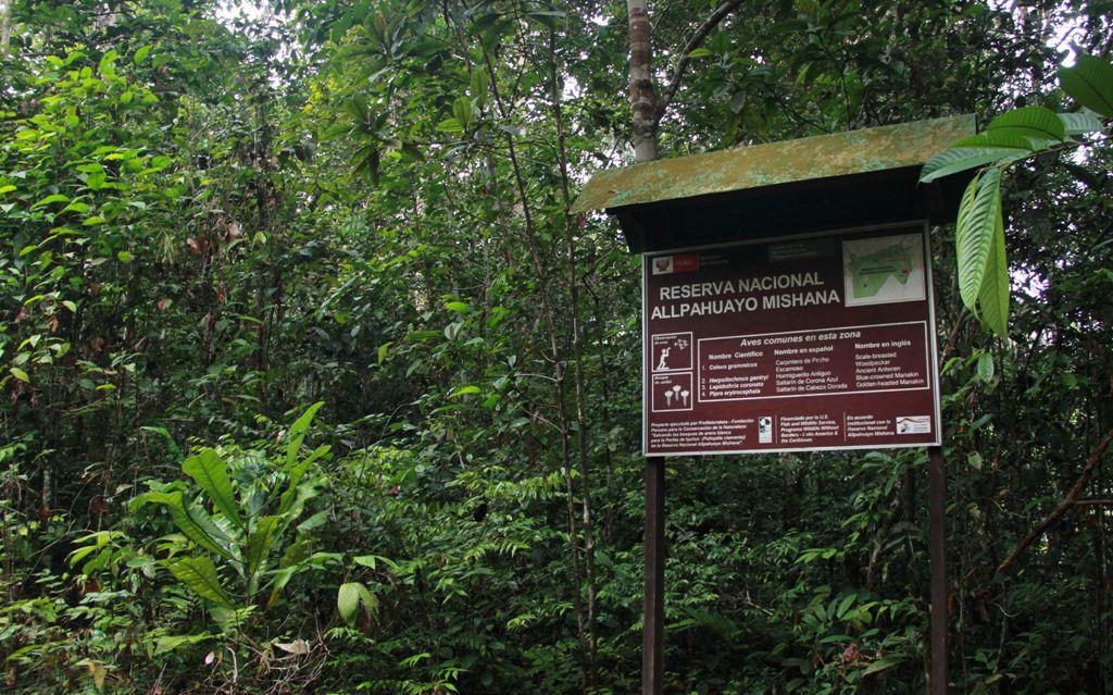 Reserva Nacional Allpahuayo Mishana