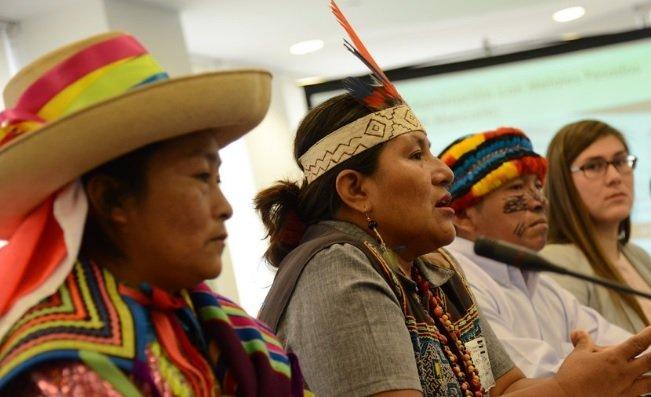 indígenas - lamula