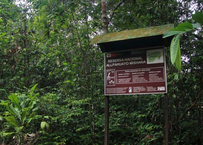 Reserva-Nacional-Allpahuayo-Mishana