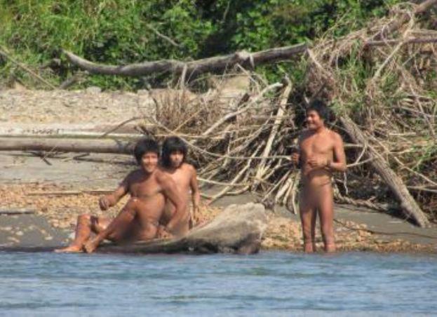 indigenas en aislamiento - andina