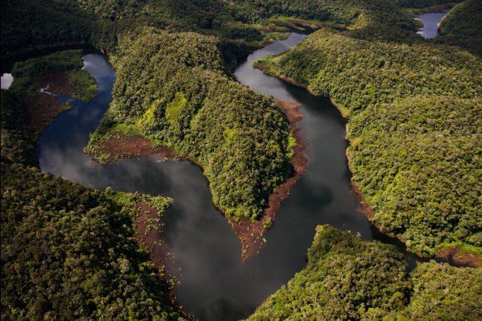 Congresista Tubino vuelve a presentar proyecto de ley para construir carretera que afectaría a Parque Nacional Alto Purús
