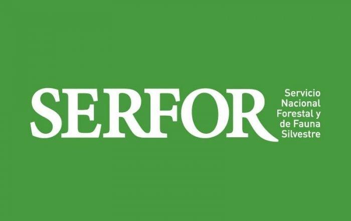 Logo SERFOR