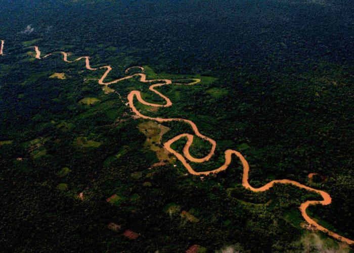amazonia-spda