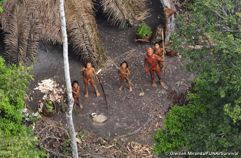 indigenas_aislamiento_survival