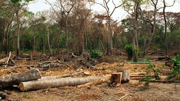 deforestación_peru21