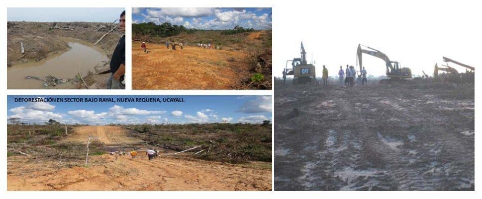 deforestacion_ucayali_spde