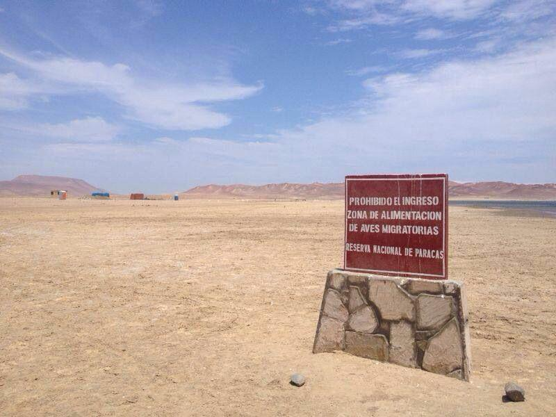 Paracas_zona_prohibida_construccion