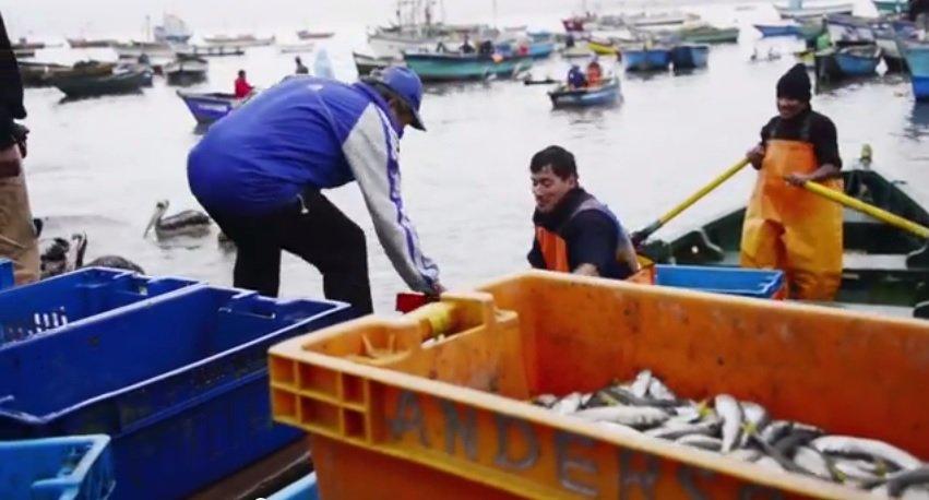 pesca ancón_spda