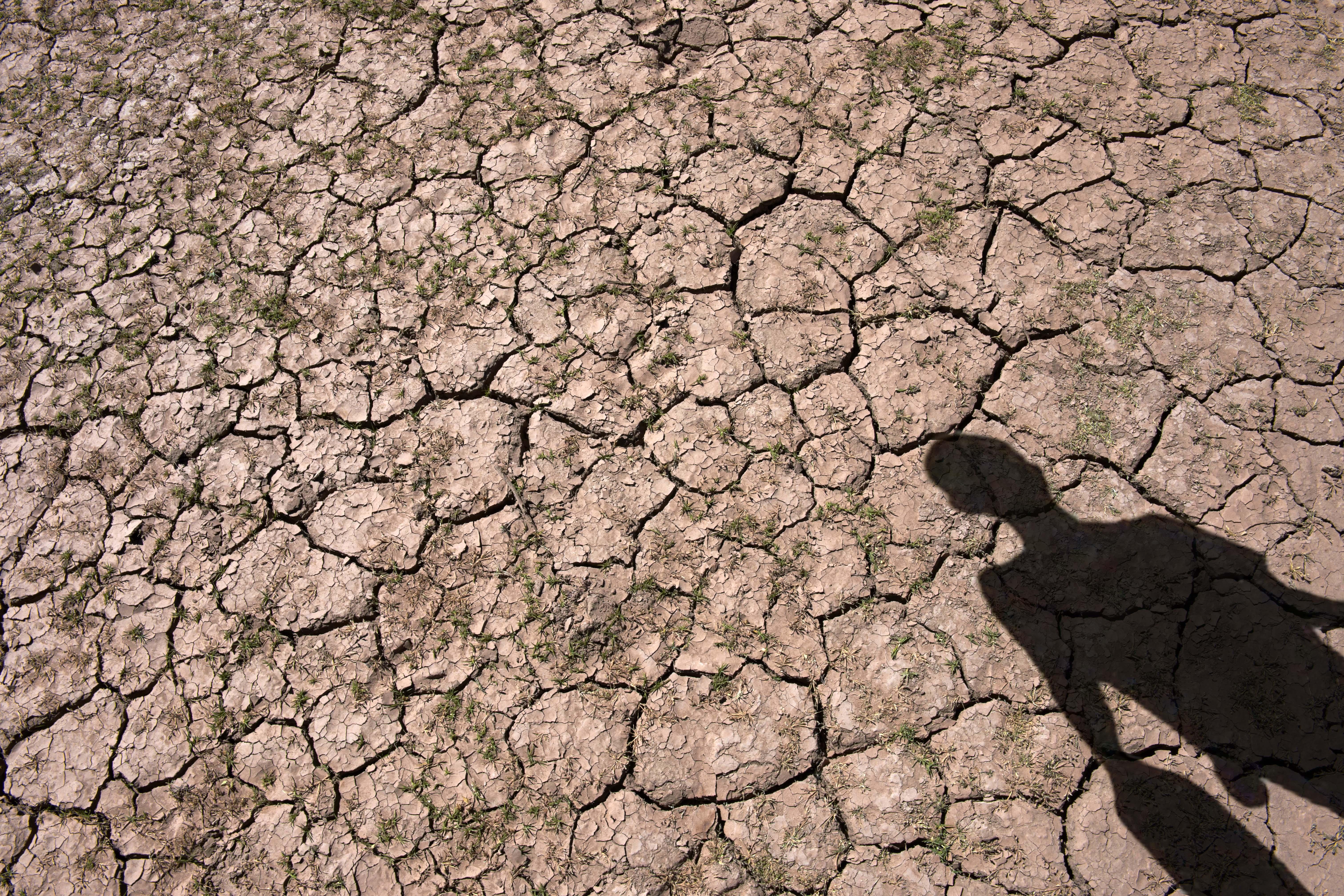 tierra seca