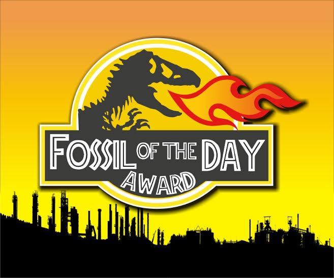 fosil del día 1