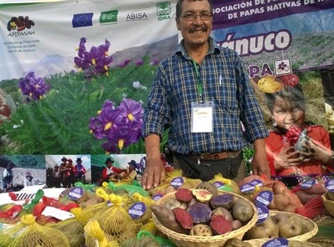 quisqui_huánuco