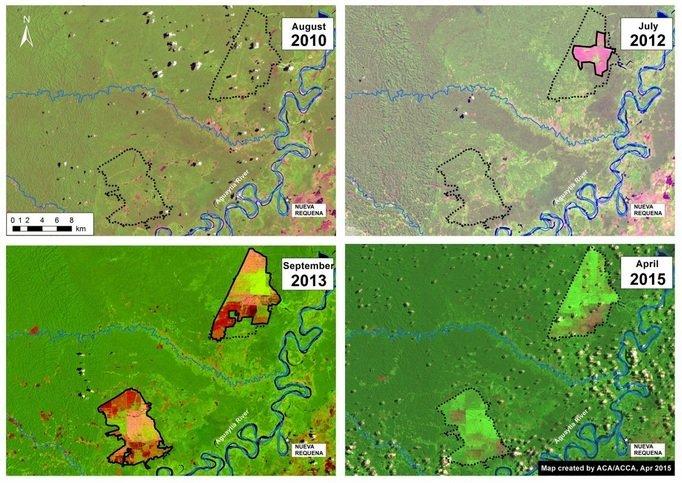 deforestación entre 2010 y 2015_ACCA