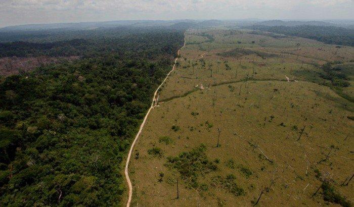 Deforestación Loreto