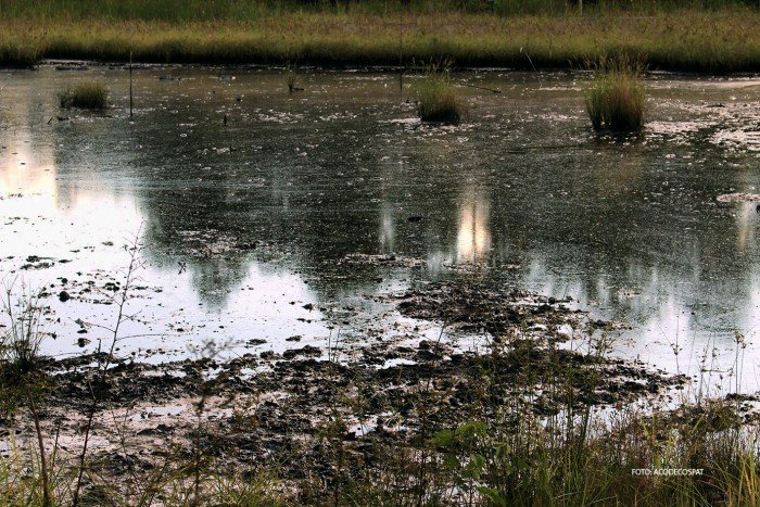 Contaminación en Lote 192, Loreto. Foto: Acodecospat