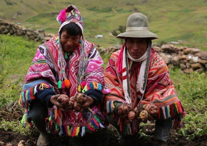 agrobiodiversidad Cusco_spda