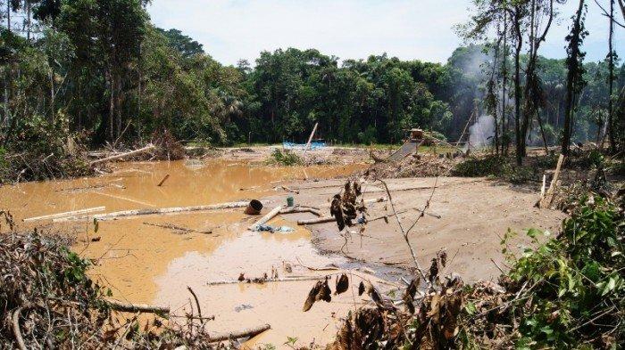 Foto minería ilegal ZA de RN Tambopata Sernanp