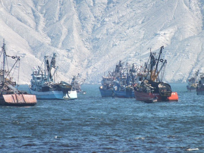 Produce descata que pesca ilegal haya aumentado. Foto_Andina