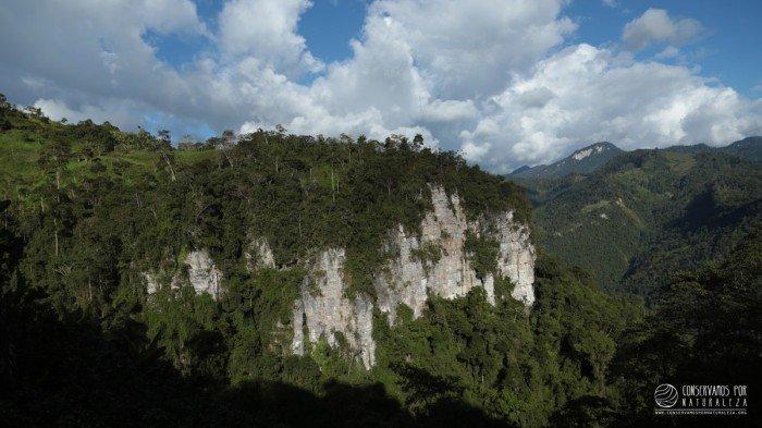 copallin_conservamospornaturaleza_actualidad_ambiental_amazonas_cordillera_colan