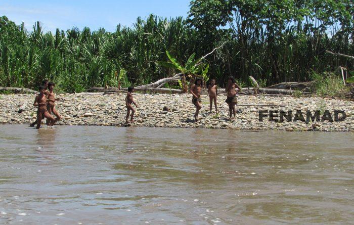 Mashco Piro_indígenas aislamiento voluntario_Fenamad