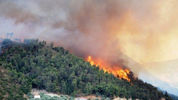 incendio-forestal-cajamarca-rpp