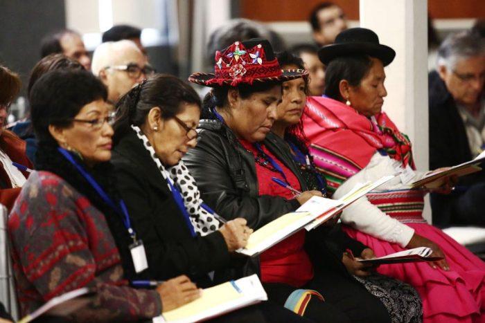 participacion-agencia-andina