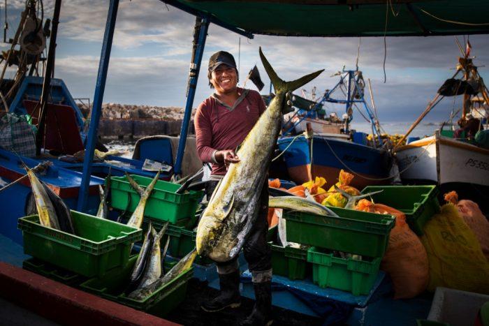 0-mar-y-pesca-el-taller