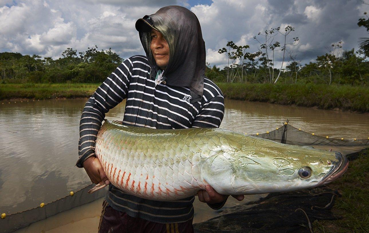 pesca-thomas-muller