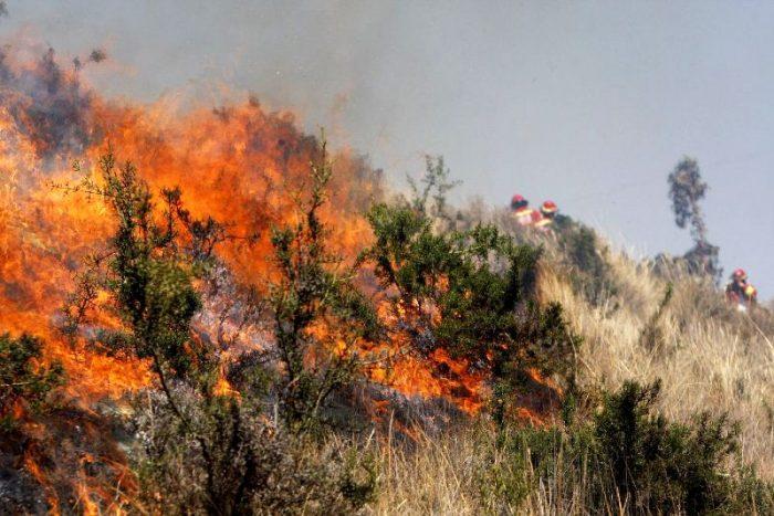 incendio-forestal-andina