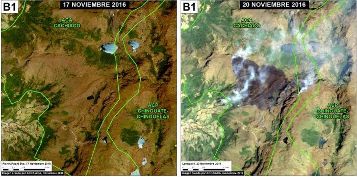 incendios_forestales_actualidad_ambiental_maap_1
