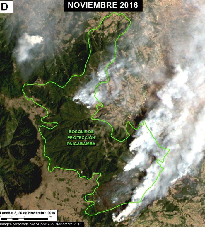 incendios_forestales_actualidad_ambiental_maap_8