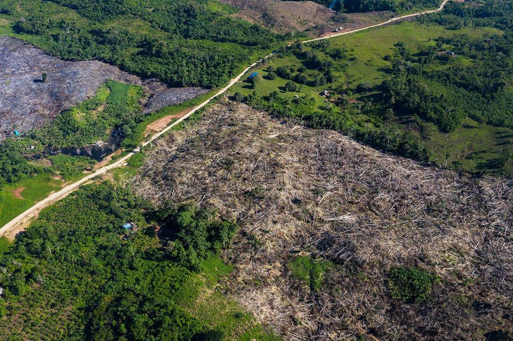 Consulta previa, promoción de carreteras en la Amazonía y una ley que debe ser derogada